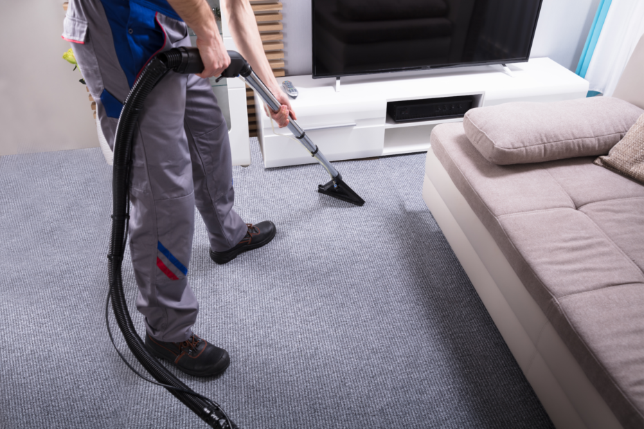 Professional carpet cleaner cleans carpets